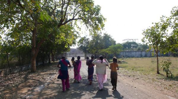 ユニオンカーバイド工場事故跡地の木にたわわに実る果実をとって帰る女性たちの群れ
